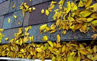 fall-roof